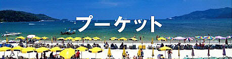 TOPプーケット単品_NEW_NEW.jpg